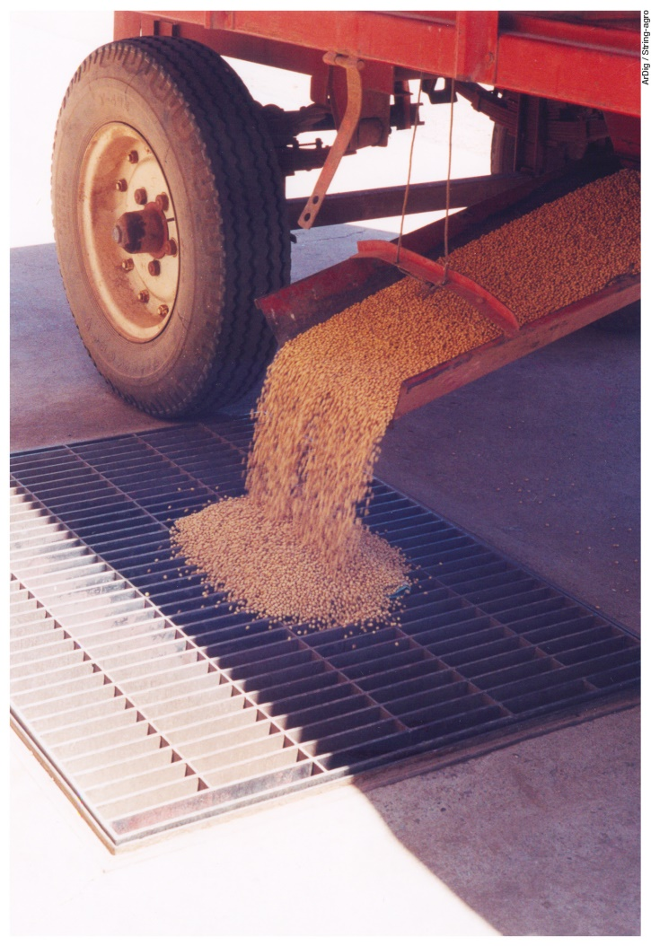 SOJA: los saldos de cosecha ayudan a revertir problemas nutricionales